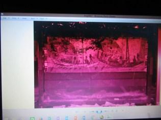 الصورة عند استخدام الأشعة فوق البنفسجية