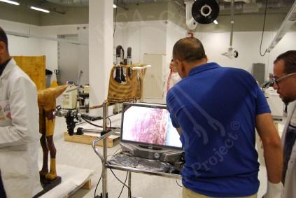 Diagnostic analysis using Digital microscope