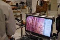 デジタルマイクロスコープによる調査