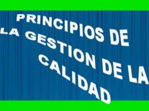 Los Principios De La Gestión De La Calidad.