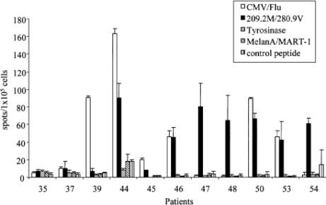 Cytotoxic T Lymphocyte Reactivity to gp100, MelanA/MART-1