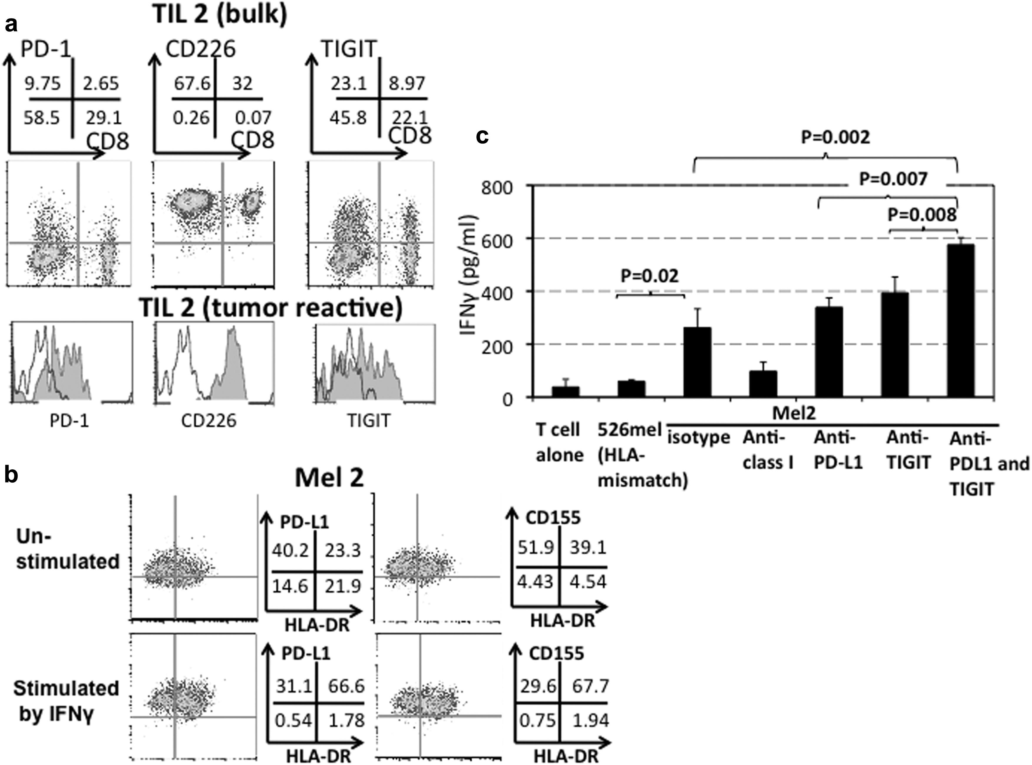 Melanoma Cells Control Antimelanoma CTL Responses via