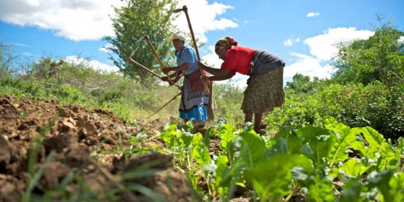 Banks not loaning to Agriculture
