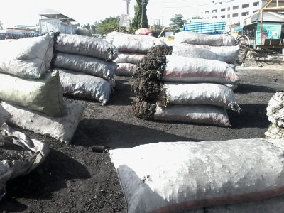 Use of sustainable charcoal Tanzania
