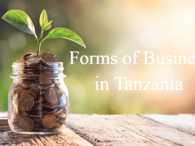 Forms of Business in Tanzania