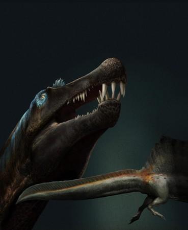 大型肉食恐竜スピノサウルスの頭部と下半身の想像図。ほぼ完全な尾の化石が発見され、泳ぐのが得意だったとみられる(国際研究チームのダビデ・ボナドンナ氏提供)
