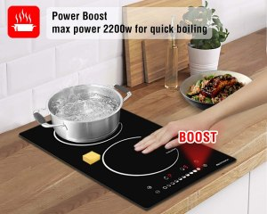 tiny house induction cooktop Burner