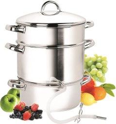 Stainless steel fruit steamer Juicer