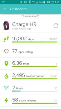 16,000 steps!