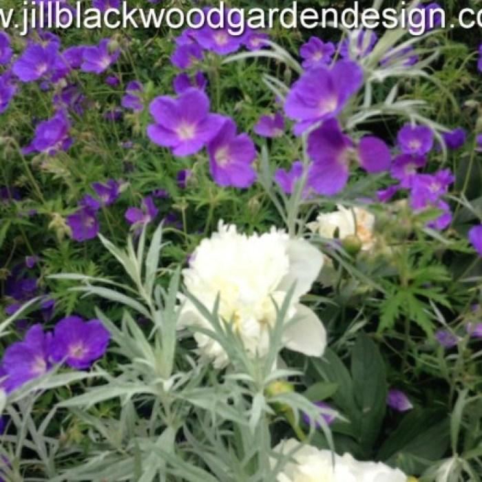 Traditional Garden Design Faringdon, Oxfordshire