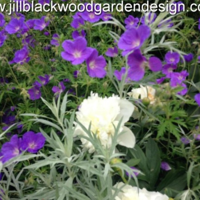 Traditional Garden Design Oxfordshire