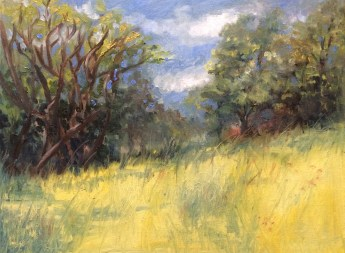 "Weir Farm Summer's Day, en Plein air, oil on linen, 16""x20"""
