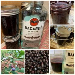 Blueberry Daiquiri jelly
