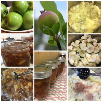 Chunky Old Fashion Apple Butter