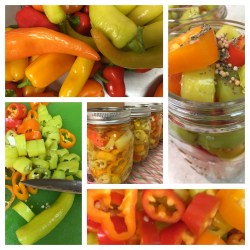 Pickled Banana Pepper Rings