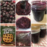 Blueberry Spread with Stevia