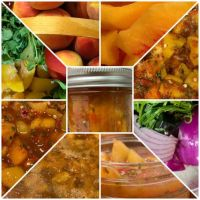 Peach Fruit salsa