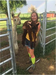 Old Homestead Alpacas: alpaca babies