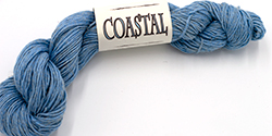 Coastal Yarn in Sky Blue