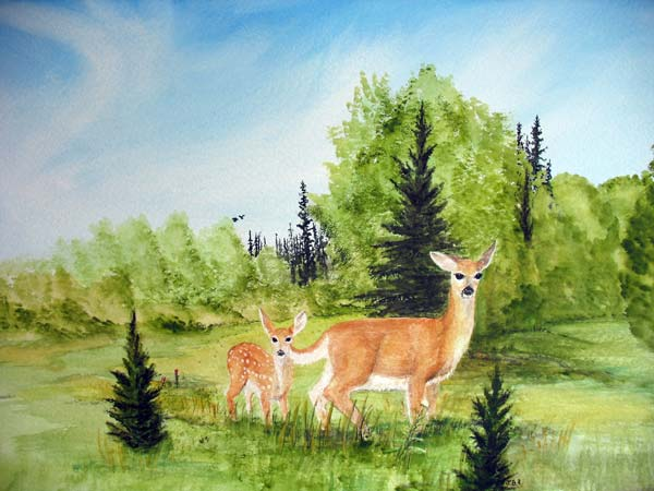 Deer in summer with fawn: painting