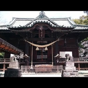『北海道札幌市南区』の動画を楽しもう!