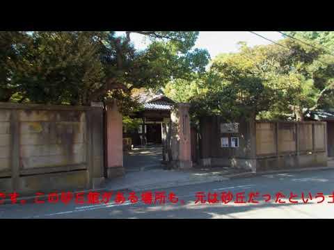 『新潟県新潟市中央区』の動画を楽しもう!