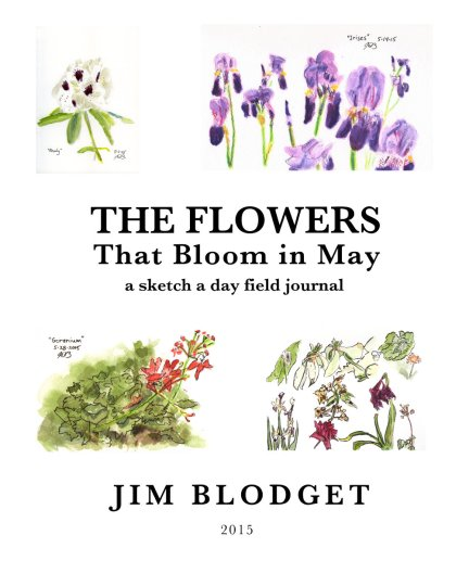 The Flowers That Bloom in May Cover