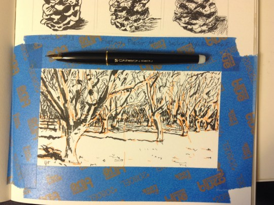 The Orchard - Extra Fine Nib Pen