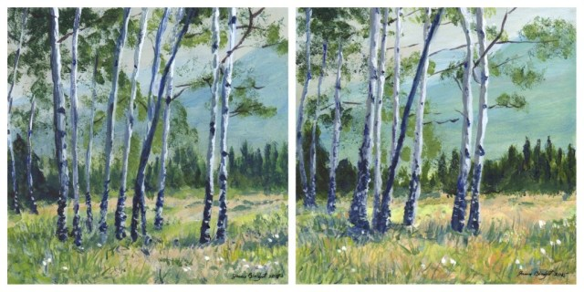 Canadian Aspens - Day 3
