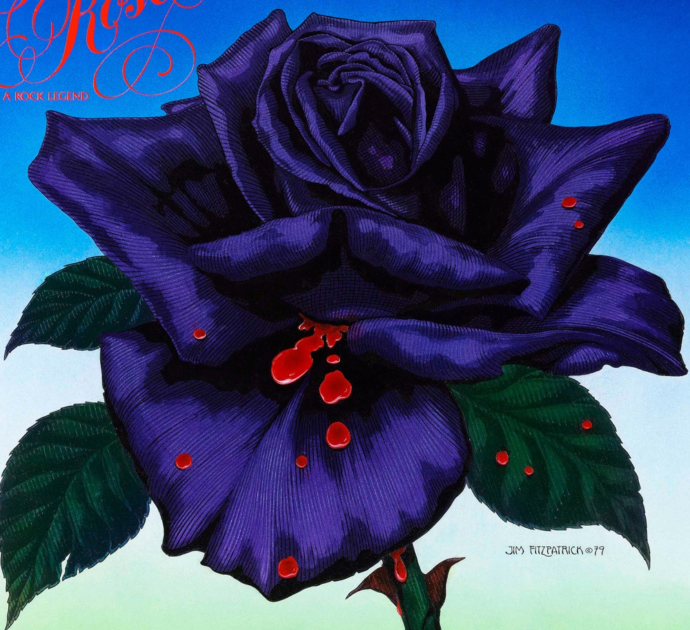 Blue Black Rose With Blood Wwwtopsimagescom