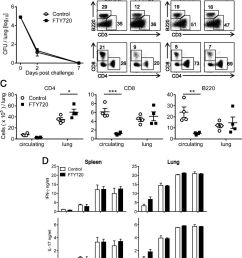 lung cd4 tissue resident memory t cells mediate adaptive immunity induced by previous infection of mice with bordetella pertussis the journal of  [ 1098 x 1280 Pixel ]