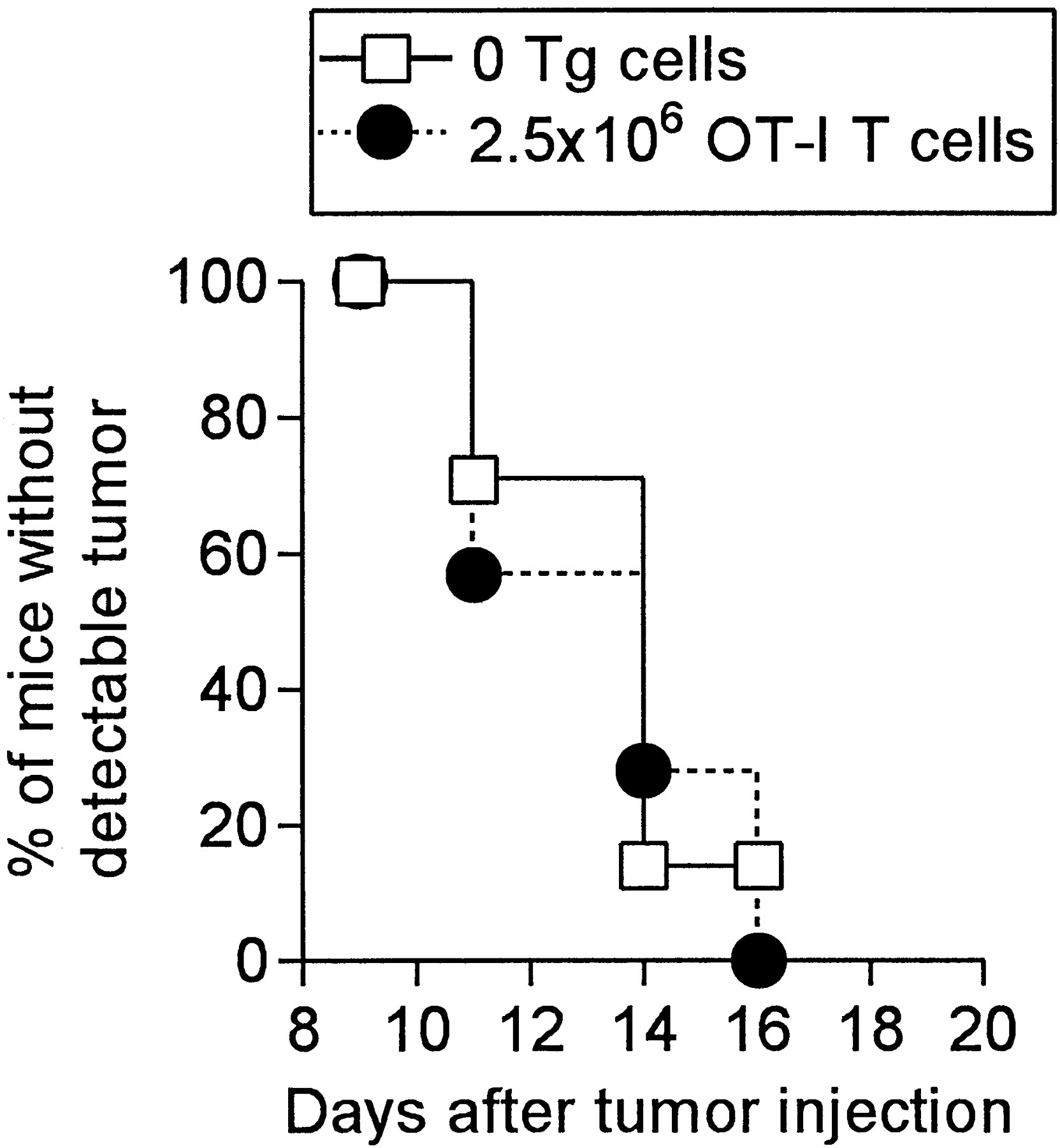 Reversal of CD8+ T Cell Ignorance and Induction of Anti