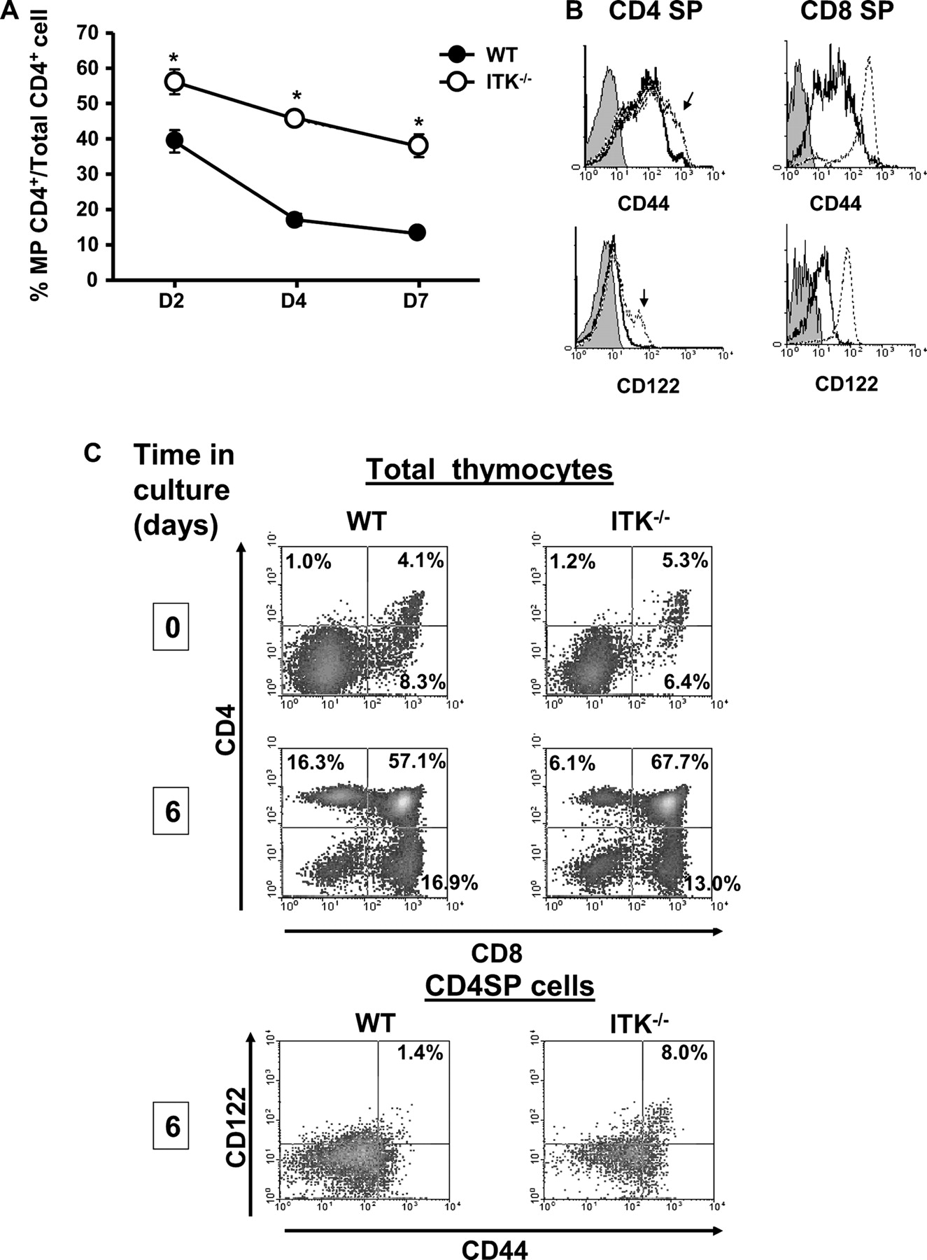 Naive and Innate Memory Phenotype CD4+ T Cells Have