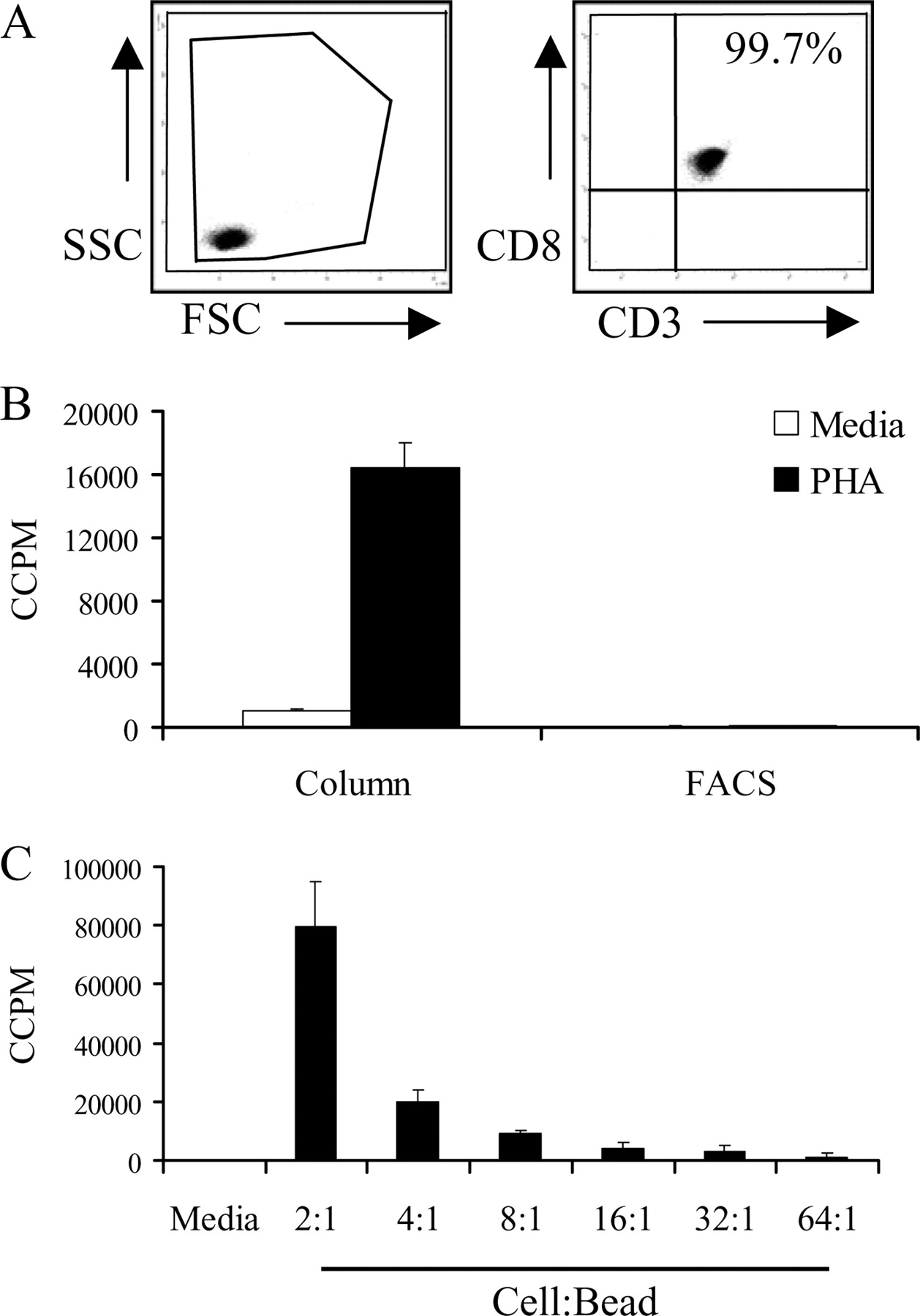Activated Human Neonatal CD8+ T Cells Are Subject to