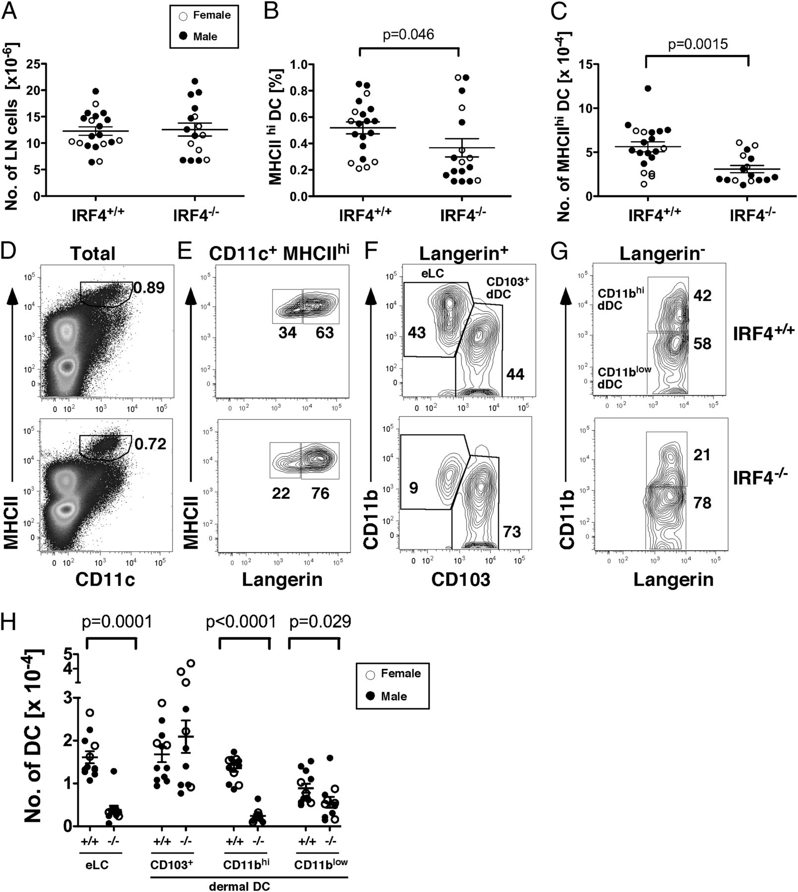 Irf4 Promotes Cutaneous Dendritic Cell Migration To Lymph