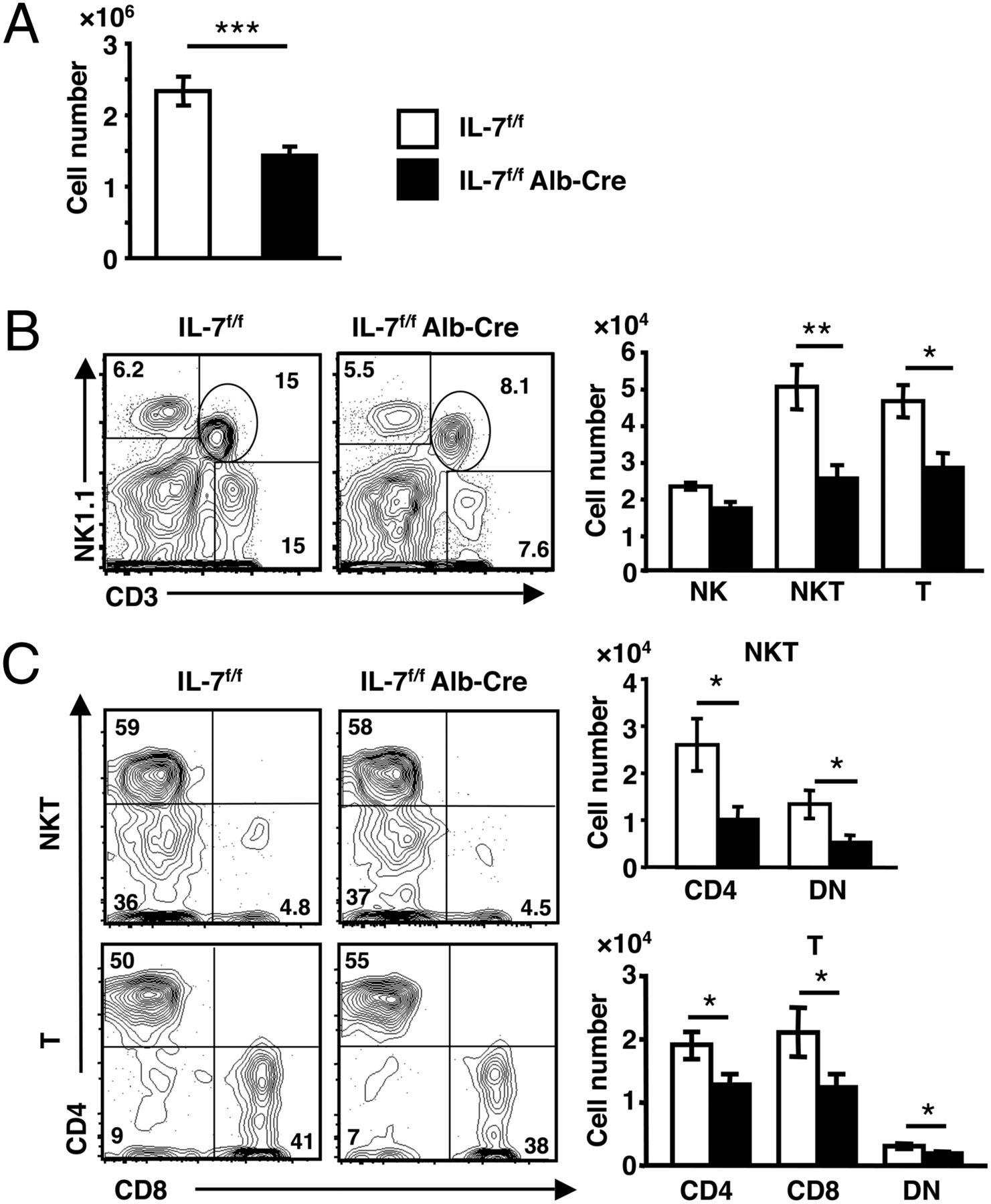 Role of Hepatocyte-Derived IL-7 in Maintenance of