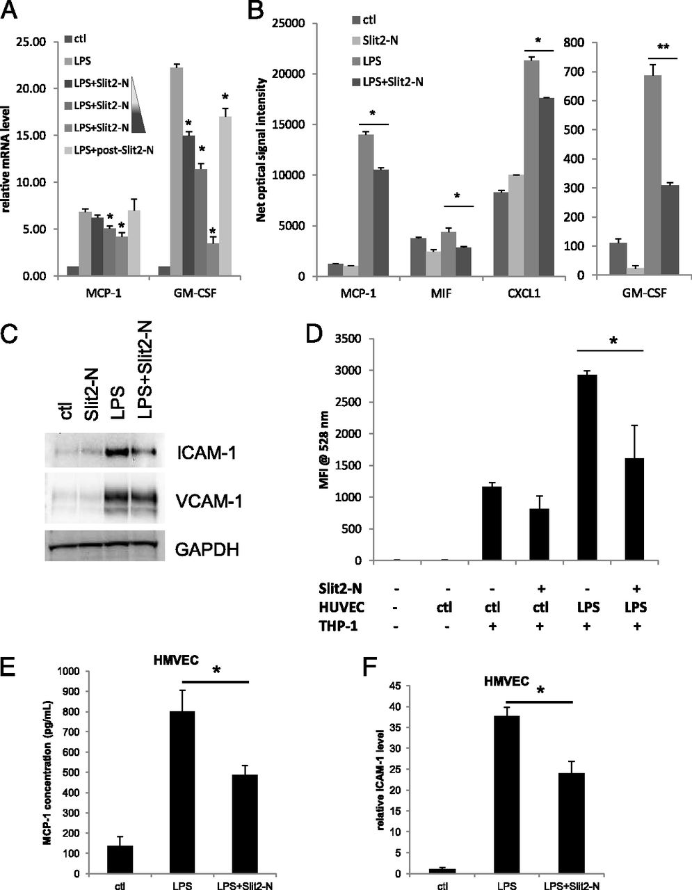 Slit2–Robo4 Pathway Modulates Lipopolysaccharide-Induced