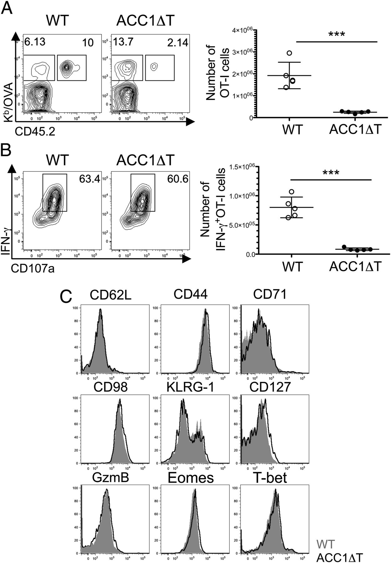 Regulator Of Fatty Acid Metabolism Acetyl Coenzyme A Carboxylase 1 Controls T Cell Immunity