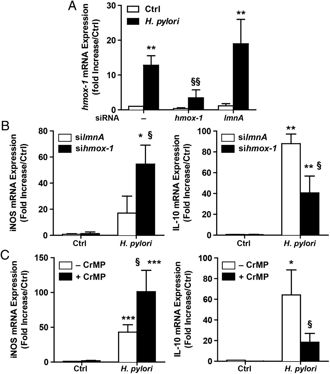 Heme Oxygenase 1 Dysregulates Macrophage Polarization And
