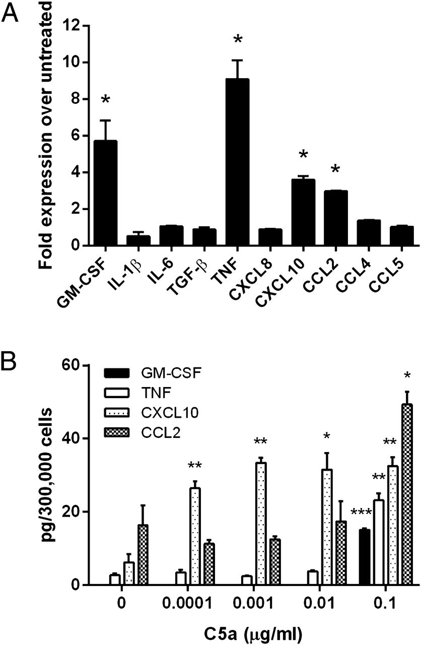 The Novel Receptor C5aR2 Is Required for C5a-Mediated