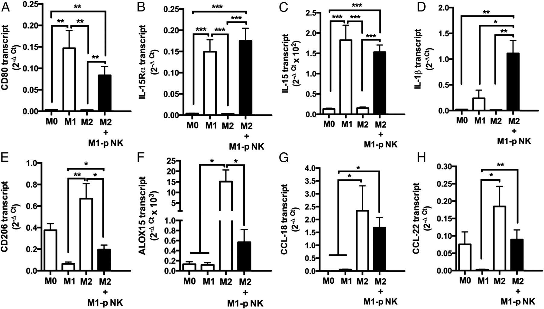 Priming of Human Resting NK Cells by Autologous M1