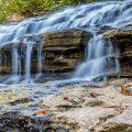 Nature Photography - Tanyard Creek Nature Trail