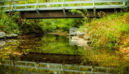 nature photography Nature Photogrpahy – Autumn in Bella Vista Arkansas Autumn at Tanyard Creek 39