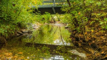 nature photography Nature Photogrpahy – Autumn in Bella Vista Arkansas Autumn at Tanyard Creek 40