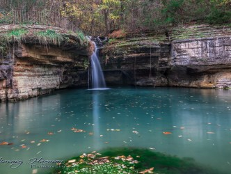 nature photography Nature Photography – Dogwood Canyon Dogwood Canyon 12