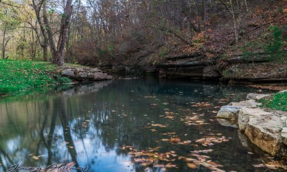 nature photography Nature Photography – Dogwood Canyon Dogwood Canyon 15