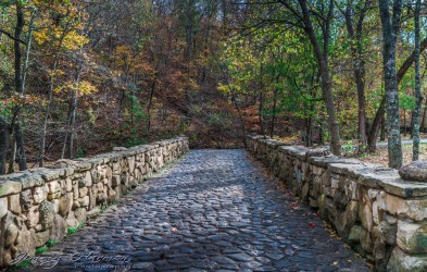 nature photography Nature Photography – Dogwood Canyon Dogwood Canyon 20