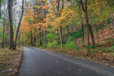 nature photography Nature Photography – Dogwood Canyon Dogwood Canyon 25