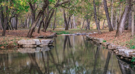 nature photography Nature Photography – Dogwood Canyon Dogwood Canyon 26