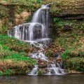 Nature Photography - Dogwood Canyon